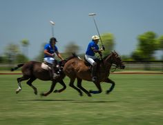 Play polo in Argentina with the best polo players of the world #argentinapoloday #polo #poloargentino #playpolo