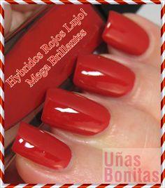Hybridos Rojos Lujo! Mega Brillantes
