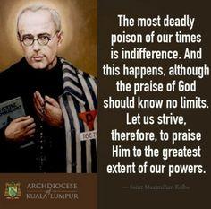 Catholic Quotes, Religious Quotes, Catholic Saints, Roman Catholic, Maximillian Kolbe, St Maximilian, Nicene Creed, St John Vianney, Saint Thomas Aquinas