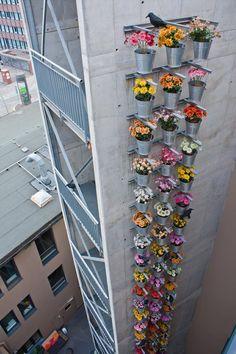 Vertical garden in the big town | Flower Design