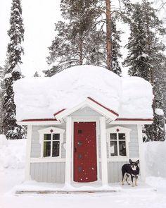 Winter in Kittilä Lapland, Finland Photo by @Virpula1