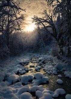 Snow Glow ... by Roland Maria Reininger