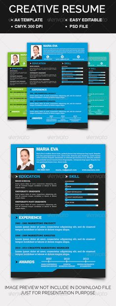 Resume Maker For Mac Resume Maker  Custom Personal Resume Template  Resume Builder  Cv .