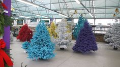 Flocked trees of every color. Yellow, purple, red and BLUE. Add some orange decorations to make a Bronco Football Christmas tree. Grinch Christmas Tree, Christmas Tree Forest, Christmas Tree Pattern, Felt Christmas, Flocked Christmas Trees, Tree Roots, Trendy Tree, Tree Wedding, Flocking