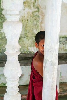 Jeune moine au Sri Lanka