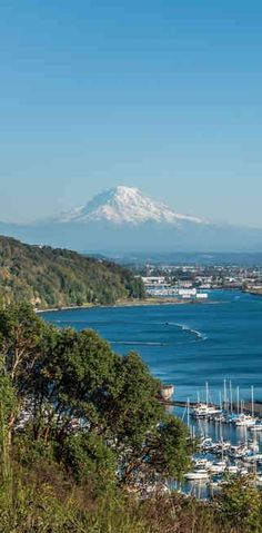 Whether you're looking to take a summer road trip, or perhaps relocate to a place where you can actually afford the rent, the last place you want to go is Bellevue, or Bainbridge Island, or Bellevue, or any of the other highly obvious well-known places, which is why we've assembled a list of eight underrated Washington towns where you should totally be spending more time…