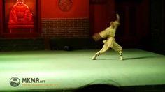 Shaolin Kung Fu Animal Styles - Snake Kung Fu - She Quan