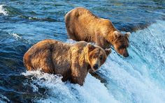 Vacation Spots in Alaska - Alaska Vacation Ideas