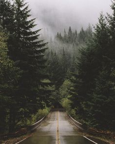 "folklifestyle:  samelkinsphoto:  evergreens  Use code ""tumblr"" for 50% off your order at www.folklifestyle.com"
