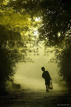 wandering ...