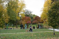 Metcalfe Park