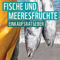 """Entscheiden Sie sich mit Hilfe des WWF-Ratgebers für Fischprodukte aus der Kategorie """"Gute Wahl"""" und helfen Sie, Meere und Fischbestände zu schonen."""