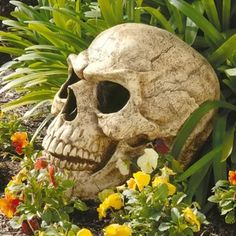 Skull | Wayfair Metal Patio Furniture, Hand Painted Furniture, Buchart Gardens, Spooky Halloween Decorations, Animal Statues, Outdoor Halloween, Outdoor Landscaping, Garden Statues, Hugs