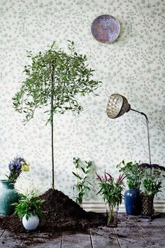 botanic garden wallpaper..