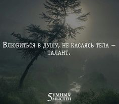Motivational Books, Inspirational Quotes, Text Quotes, Love Quotes, Russian Quotes, Truth Of Life, True Words, Cool Words, Life Lessons