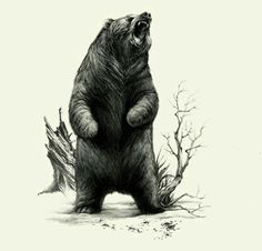 Immortal Lycanthropes by Teagan White, via Behance Del Grosso Uboldi - angry bear :@ Bear Claw Tattoo, Tattoo Small, Grizzly Bear Tattoos, Bear Sketch, Angry Bear, Bear Drawing, Literary Tattoos, Bear Pictures, Desenho Tattoo