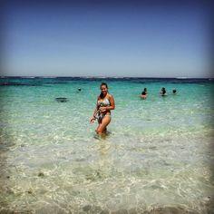 When I follow my heart it leads me to the beach  #travel #fbf #flashbackfriday #friday #swim #australia #westernaustralia #wa #rottnestisland #perth #oz #landdownunder #snorkeling #bikini #bestvacations #waterbaby by a_broadabroad http://ift.tt/1L5GqLp