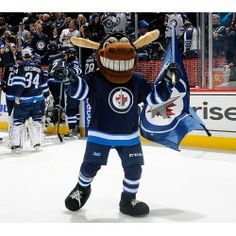 Winnipeg Jets mascot Mick E Moose Mascot Costumes, Adult Costumes, Jets, Moose, Hockey, Field Hockey, Mousse, Elk, Fighter Jets