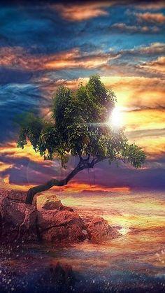 PERFECT ....... #tree sky sun reflection omg aww amazing landscape nature