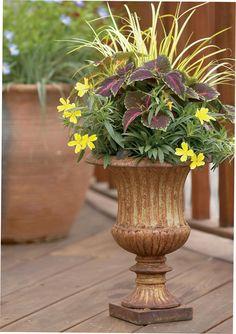 Flower pot ideas *