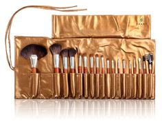 SHANY Pro Studio Quality ZGF Premium Goat Hair Brush Set with Wooden Handle and Golden Pouch *** Details can be found by clicking on the image.