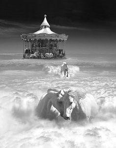 """Può un cavallo essere felice? Può. A voi uomini sembra impossibile, perché non potete leggerci dentro. Ma noi non abbiamo ieri e domani, noi abbiamo solo il momento che resta e non passa, quel che è stato non conta, quel che sarà non c'è: ogni frammento, ogni giorno fa parte a sé: ogni giorno di gioia è come eterno ed è quello il nostro segreto. A voi uomini sembra impossibile, perché non conoscete la felicità. (Roberto Vecchioni, da """"Scacco a Dio"""") Illustrazione di Thomas Barbéy."""