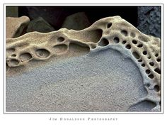 Tafoni - honeycomb rock weathering, that forms when salt air attacks clean sandstone Organic Patterns, Patterns In Nature, Textures Patterns, Figure Studies, Porous Materials, Out Of My Mind, Beautiful Rocks, Rock Formations, Triptych