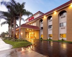 Affordable Pet Friendly Hotel In Clearwater Florida Red Roof Inn Airport Fl Stay With Pinterest Hotels