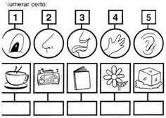 EDUCARE: Atividades dos 5 sentidos