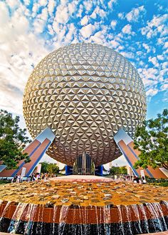 A weekend getaway to Walt Disney World with some talented photographers!