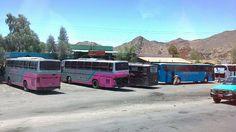 Bus stop in egyptian desert