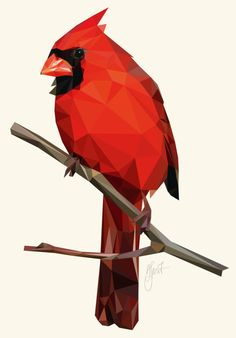 Northern Cardinal (Low poly, 2017) - Digital Art created by Dennis Smit. Geometric illustration made in Illustrator. www.schmitzl.nl