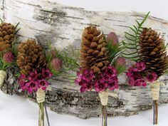Pine cone boutonnieres with raffia wrap.