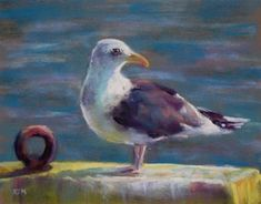 Thank you for viewing my pastels. I use the finest soft pastels on archival supports. Commissions welcome.