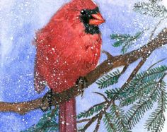 ACEO Limited Edition 8/25- Cardinal in snow, in watercolor