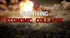 Surviving Economic Collapse - The Dollar Vigilante