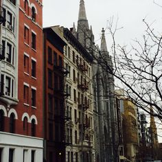 Streets of Harlem Harlem Nyc, Empire State Of Mind, Street, Life, Walkway