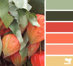 autumn hues - design seeds