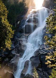 Stopped at Shannon Falls Provincial Park in Squamish, BC on the way up to Whistler.