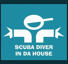 Book a Dive Now! Greenwich Diving