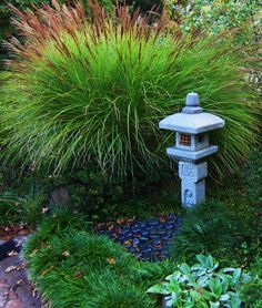 Miscanthus serves as a backdrop to a Japanese lantern.  2 WAYS TO ENLARGE! Click directly on the photo to enlarge in a pop-up, or click HERE to see this image, larger, in a new browser window.