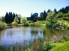 The Humber Arboretum is nature in the city at its best! The centre offers curriculum connected school trips, nature camps all year long, P. Visiting the centre is free. Stuff To Do, Things To Do, Canadian Travel, Wedding Ideas, River, City, Nature, Outdoor, Things To Make
