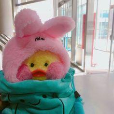 ꒰ 彡pinterest: @hoeforyanjun彡 ꒱ Cute Stuffed Animals, Dinosaur Stuffed Animal, Cute Animals, Cute Ducklings, Kawaii Plush, Baby Ducks, Cute Toys, Disney Toys, Plush Dolls