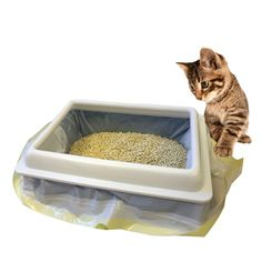 Cat Litter Box Liner Heavy duty box bags LDPE Material,36'18'(M),Thick and Durable,7 ct, 2 pack. * Visit the image link more details. (This is an affiliate link and I receive a commission for the sales)
