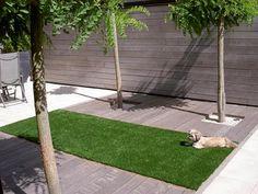 Voortuin ideeen Garden Spaces, Balcony Garden, Courtyard Gardens, Synthetic Lawn, Astro Turf, Concrete Jungle, Small Gardens, Decoration, Garden Inspiration