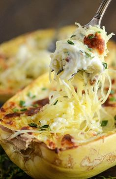 Four Cheese Chicken Stuffed Spaghetti Squash - a healthy, cheesy, gluten free dinner that will totally satisfy you! Four Cheese Chicken Stuffed Spaghetti Squash - a healthy, cheesy, gluten free dinner that will totally satisfy you! Sin Gluten, Gluten Free, Low Carb Recipes, Cooking Recipes, Healthy Recipes, Veggie Recipes, Paleo Dinner, Dinner Recipes, Dinner Ideas
