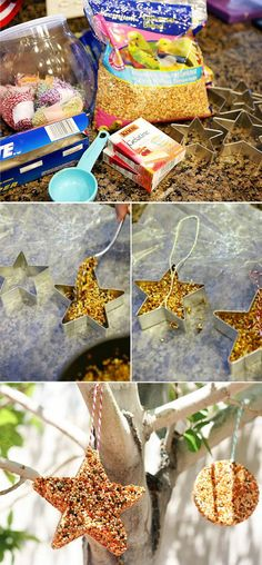 Fill with bird seeds to make an outdoor bird feeder. | 47 Unexpected Things To Do With Cookie Cutters