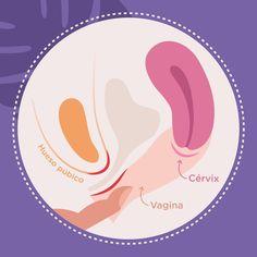 Menstrual Cup, Company Logo, Illustrations, Logos, Health, Art, Breakfast Nook, Pretty Phone Backgrounds, Art Background