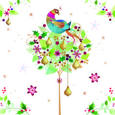 Partridge in a pear tree Twelve Days Of Christmas, 12 Days Of Christmas, Christmas Crafts, Xmas, Solstice Moon, Winter Solstice, Cold Moon, China Rose, Pear Trees