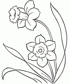 flower spring coloring pages printable is one of many images from spring flower coloring pages